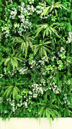 A living wall filled with plants