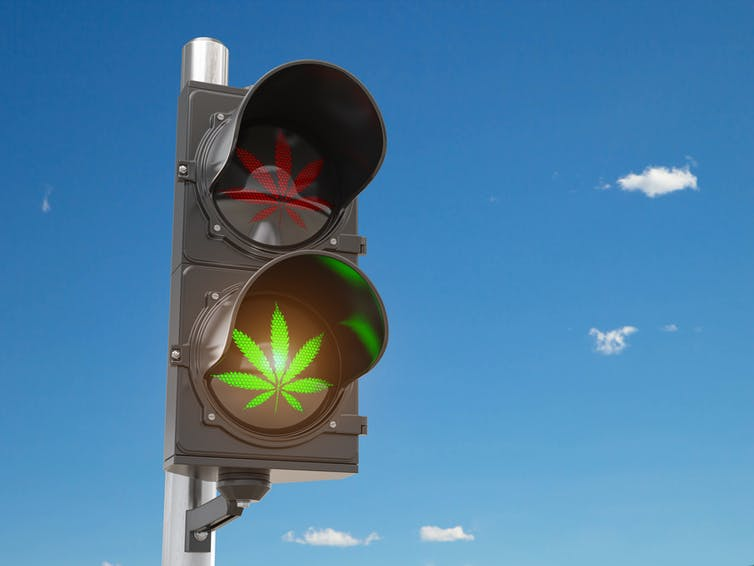 A traffic light showing a red stop cannabis leaf and a green go cannabis leaf.